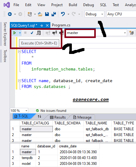 how to write sql query in visual studio
